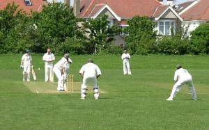 cricket-1033415_640